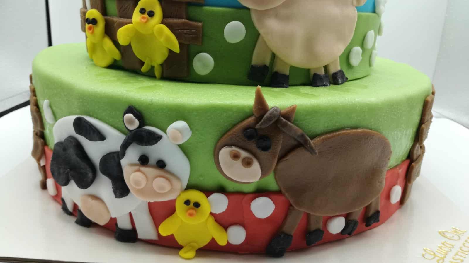 torta_personalizzata (2)
