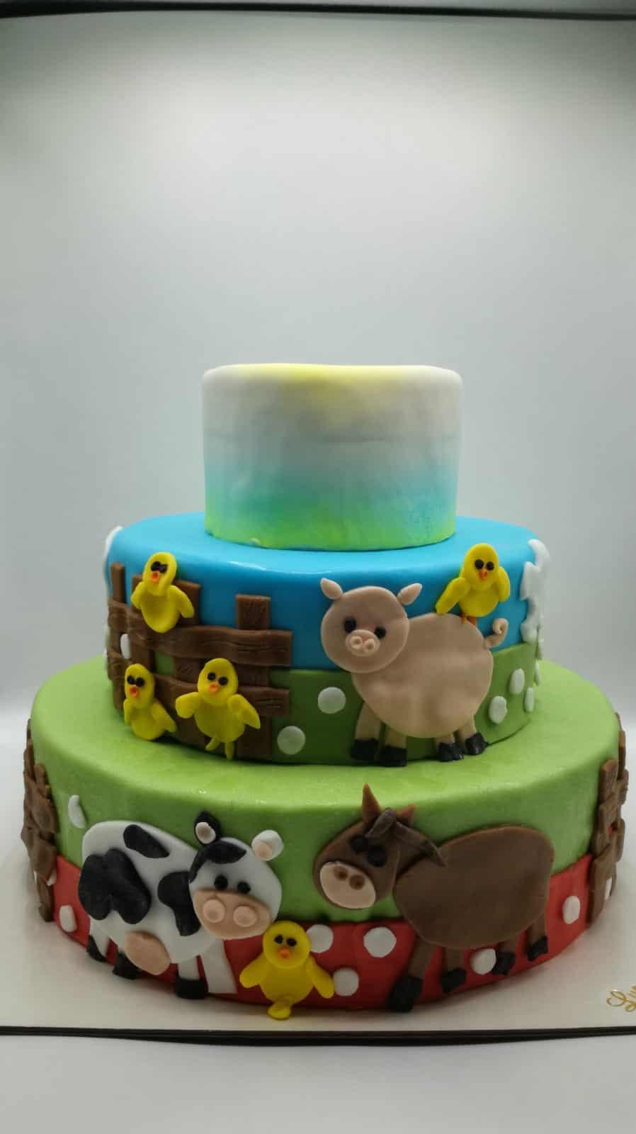 torta_personalizzata (29)